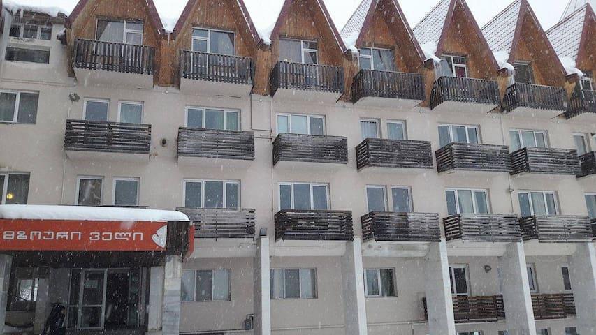 "Apartment ""Mziuri Veli"" in Bakuriani - Bakuriani - Apartment"