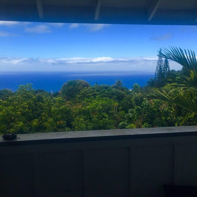 View of Kealakekua Bay.