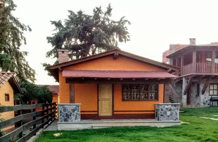 Cabañas Puerta del Bosque 4 (naranja)