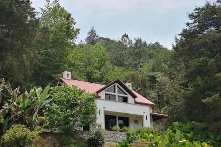 Casa en el Bosque de la Verapaz! Hab #4
