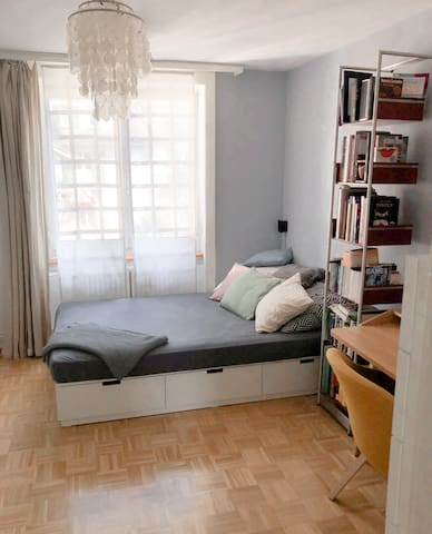 centrally located, specious and calm bedroom