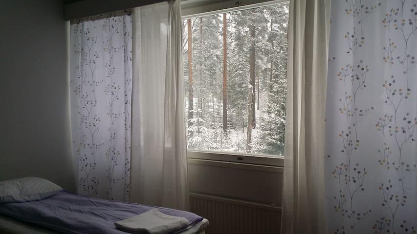 upea luontonäkymä ikkunasta