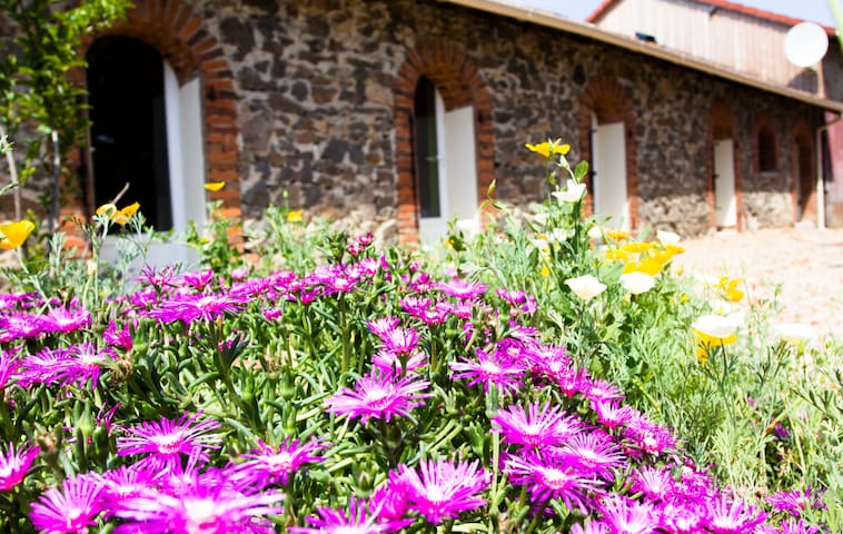 Wisdom Gites - Meadow View holiday cottage