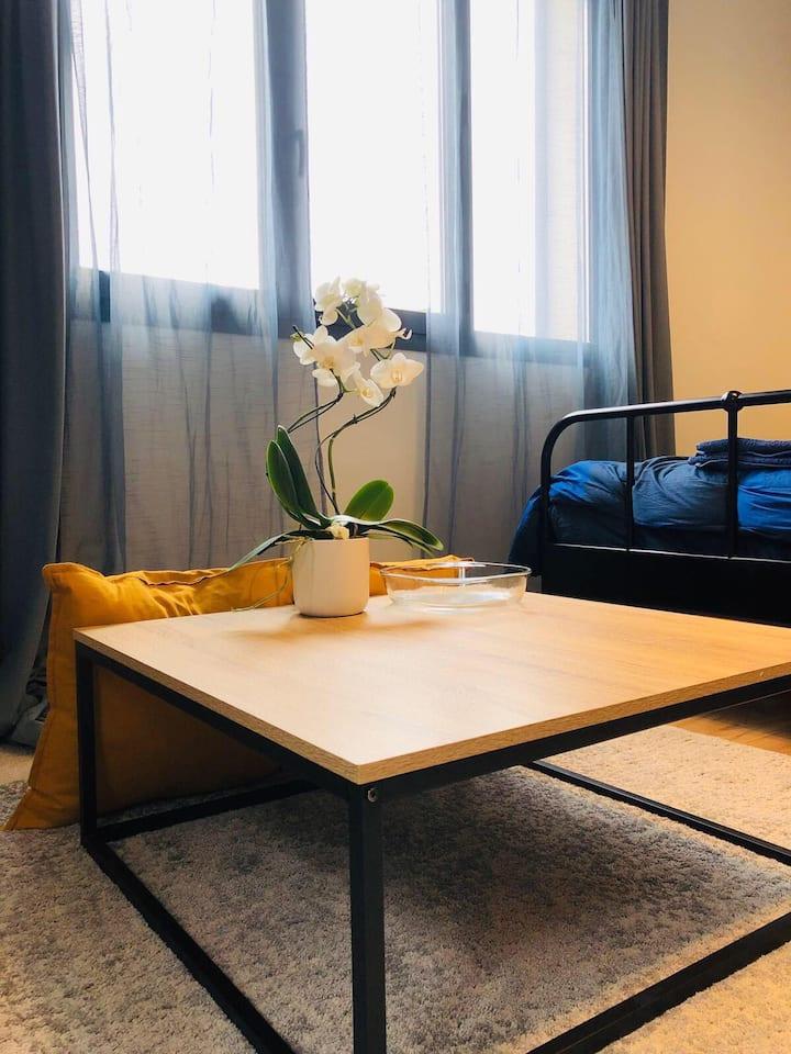 Maisons-Alfort Venus studio,  belle vue et calme
