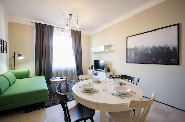 Spacious apartment near the center of Prague