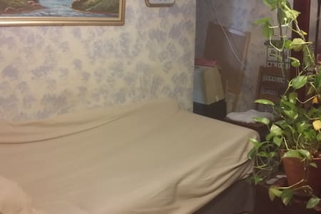 comforable couch/close to LGA airport - Квинс - Квартира