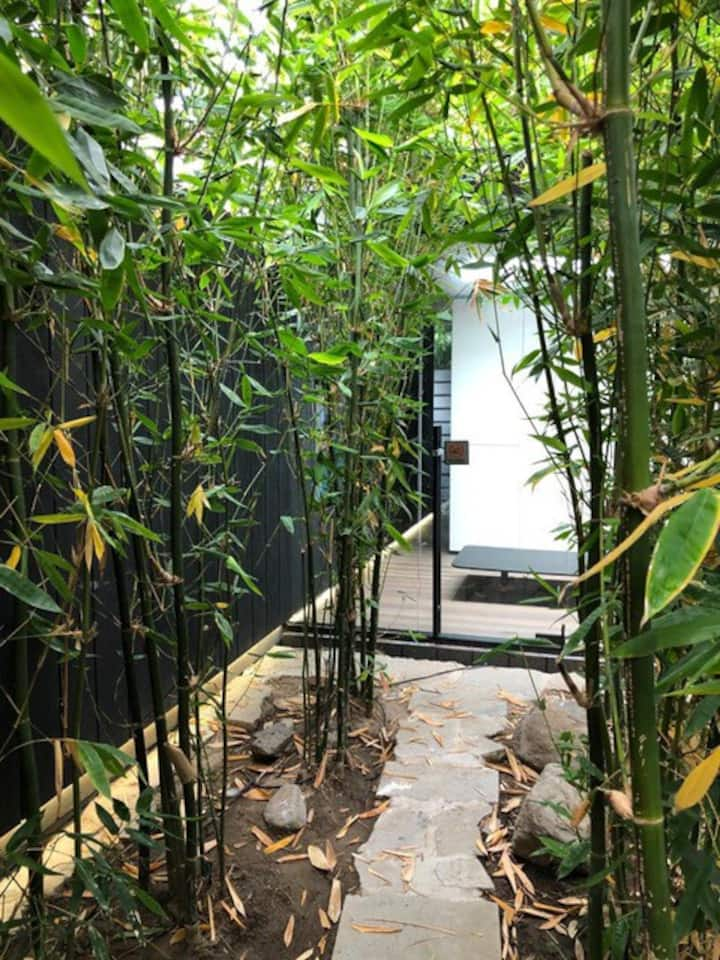 magical garden studio amongst a bamboo forrest