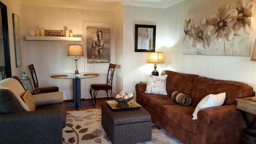 Sitting Room when entering apartment.  Has sofabed, chair and a half, ottoman, table and chairs, desk and T.V. on a storage cabinet.