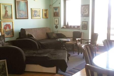 Artistic apartment in Novi Sad