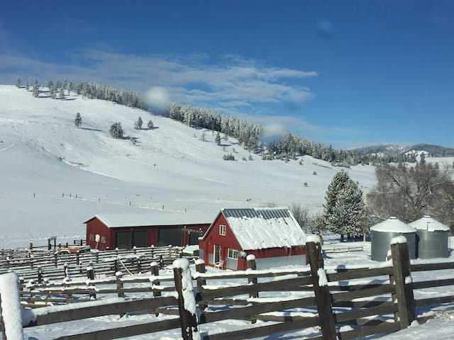 Ranch in the snow