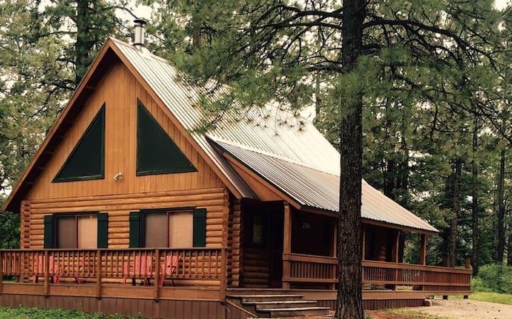 Cozy Log Cabin w/ HotTub Near Purgatory Ski Resort