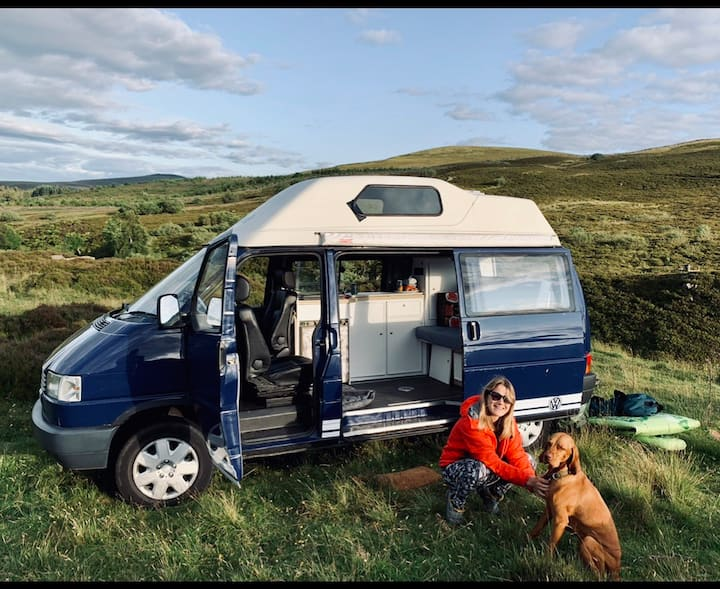 VW Camper - Classic T4 Caravelle High Top