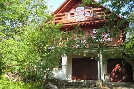Ein  ruhiges Haus am See in  Kaszubien, im Wald. - Gołubie - บ้าน