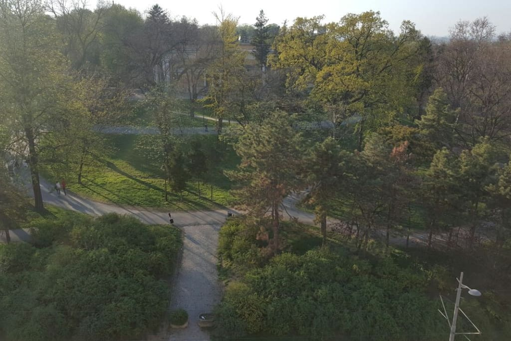 View on Kalemegdan park from the flat