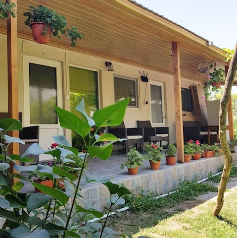 Maria & Nick Guesthouse 1