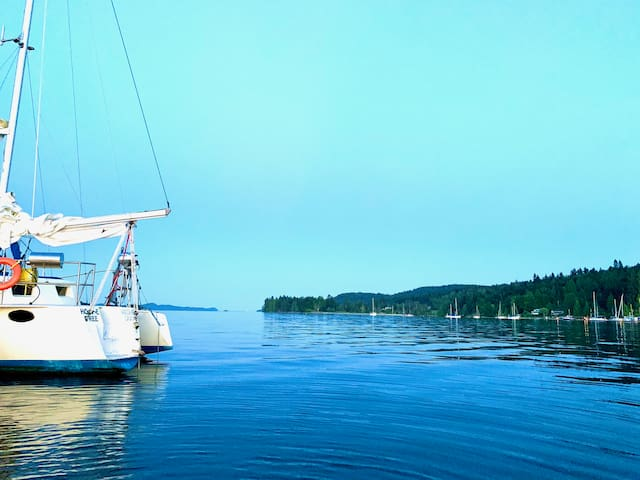 Home Free Boat Stay Tofino Waterfront @ it's best~