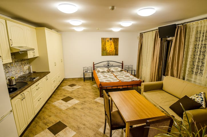 Central Oldtown apartments - Vilnius - House