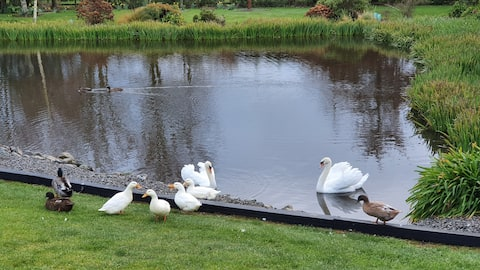 Swan Lake Gardens Country Cottage.