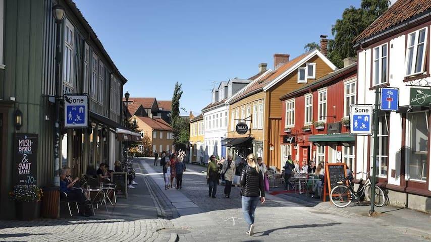 In beautiful Bakklandet (Free parking)