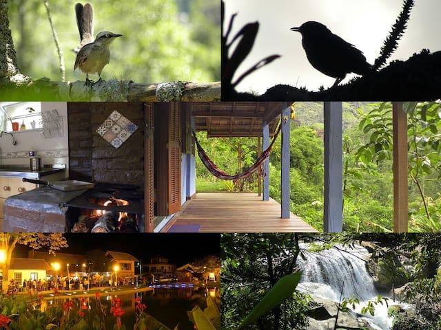 PAZ, fogão a lenha e uma varanda no verde infinito - Nova Friburgo - Cabana