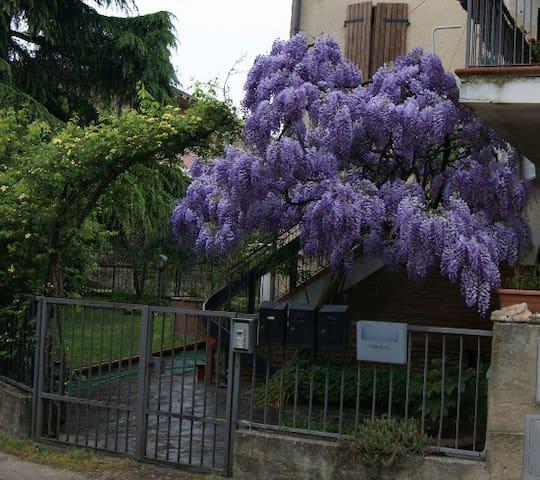 Il cancello dei Glicini - Staggia - Apartament