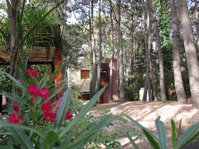 Magnifica residencia en el bosque - Villa Gesell - Huis