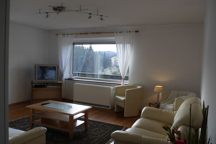 Large Relaxing Countryside Flat - Henndorf am Wallersee - Apartament