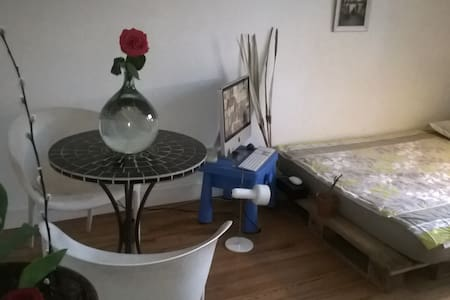 DOUBLE ROOM in Beautiful Villa with Garden Center - อานเนอซี - วิลล่า