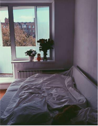 Апартаменты на Кутузовском проспекте - Moskva - Flat