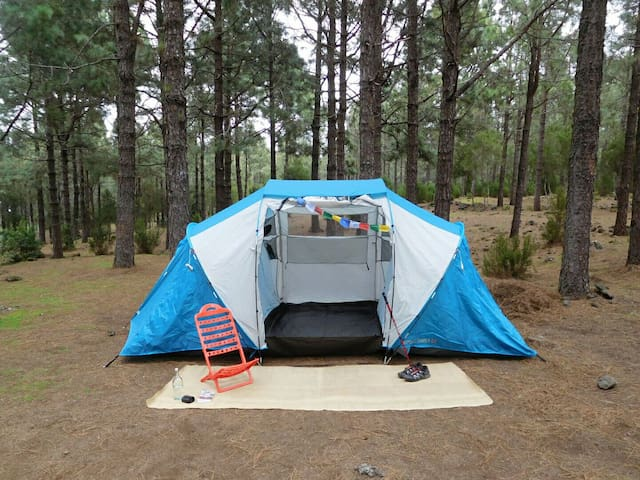 BIG TENT+DINNER+BREAKFAST - San José de los Llanos - Tent