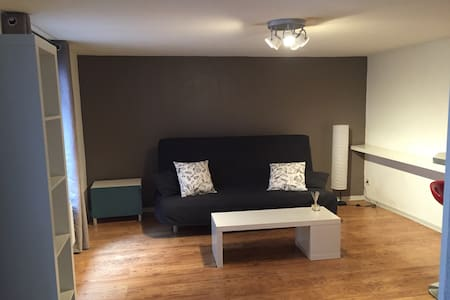 Grand studio au centre ville - Strasbourg - Apartment
