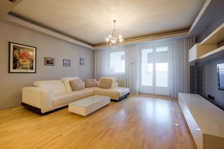 Large cozy and quiet apartment - Beograd - Wohnung