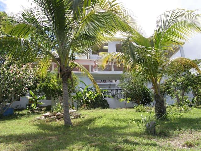 Elisabeth's Vieques Island Home