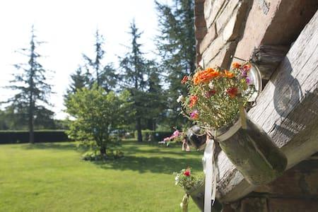 Villa Montegenco b&b - Comunanza - Apartment