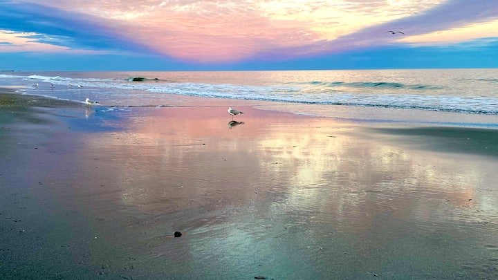 Sand, Sea, and Sunsets - Happiness comes in waves!