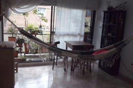 Céntrico, cómodo, lindo - San Miguel de Tucumán