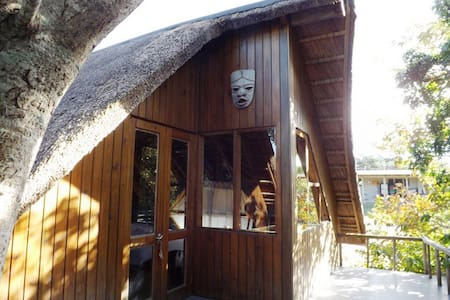 Thatched Treehouse by the sea - East London - Cabane dans les arbres