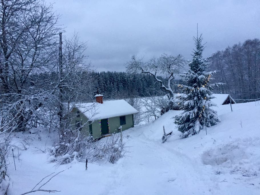 Winter at the cottage. Skiing available.   Many nearby ski resorts.