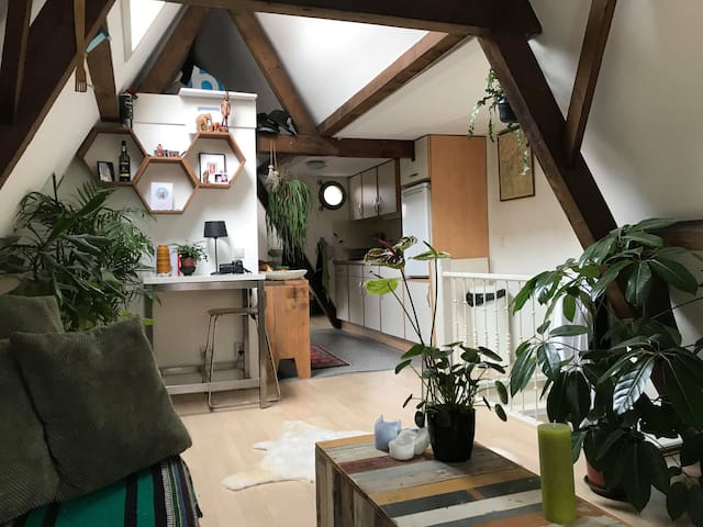 Characteristic cozy appartement  in the center.