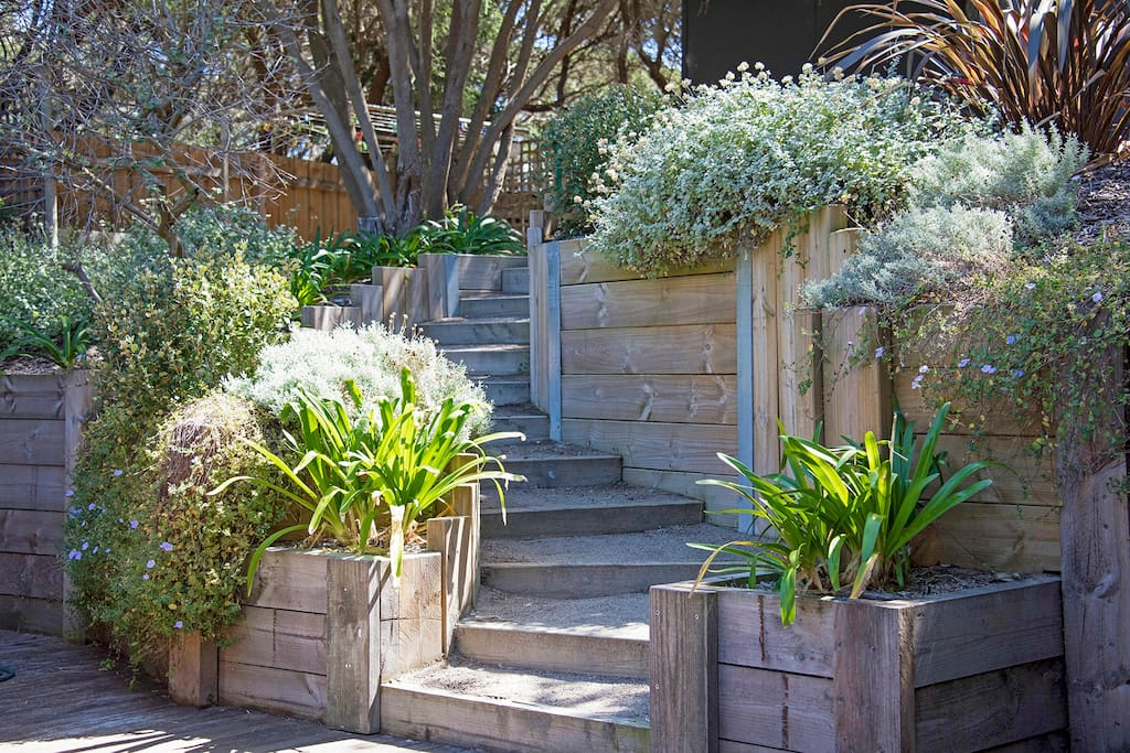 The stairs lead you up to the native garden in the backyard