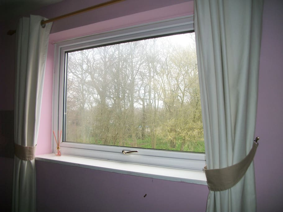 lovely view of woods from window