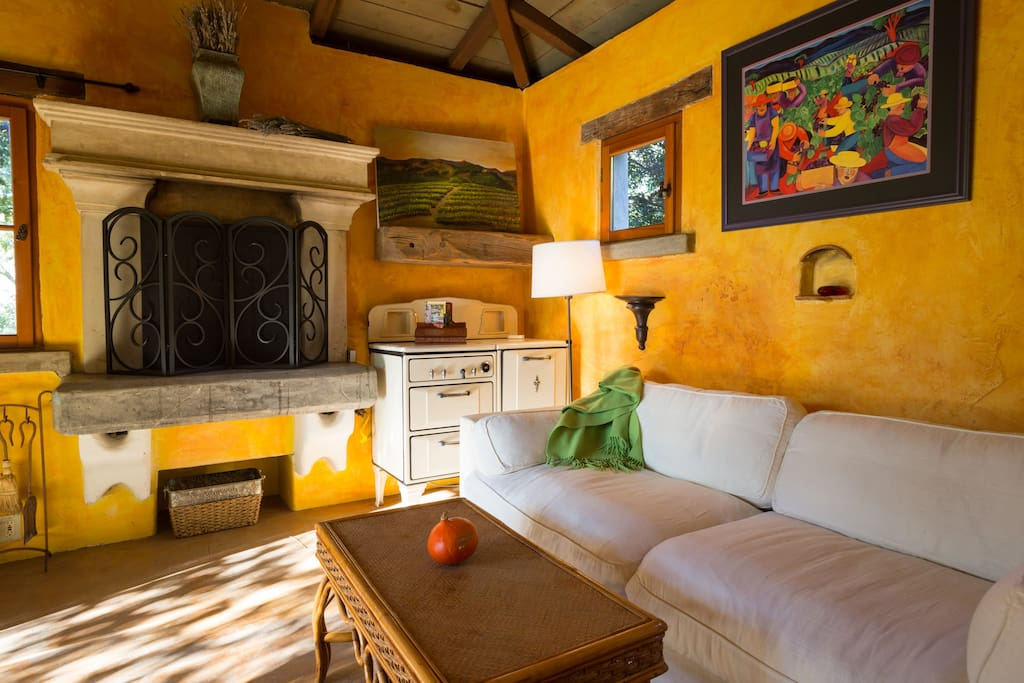 the casita has a fire place with garden view