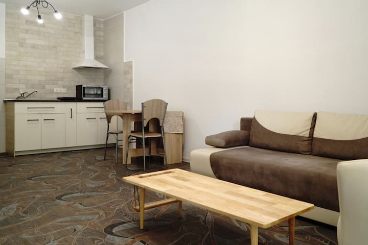Exquisite Apartment (good for work & city trips)