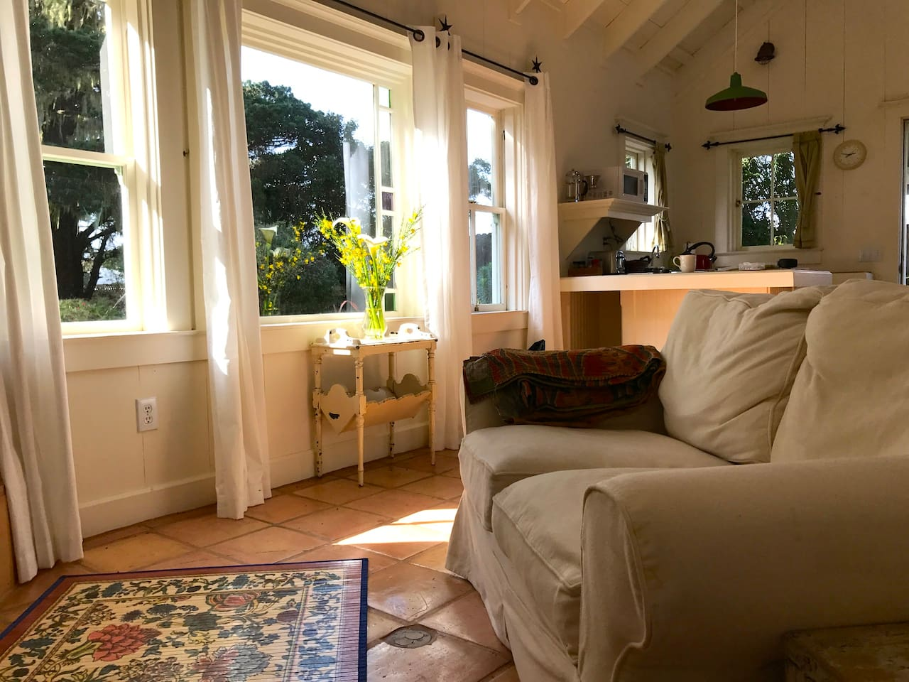 Sunlight pours through the west facing windows in the afternoon.
