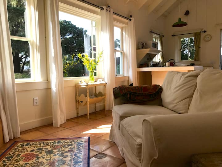 Mendocino coast ocean-view cottage, walk to beach.