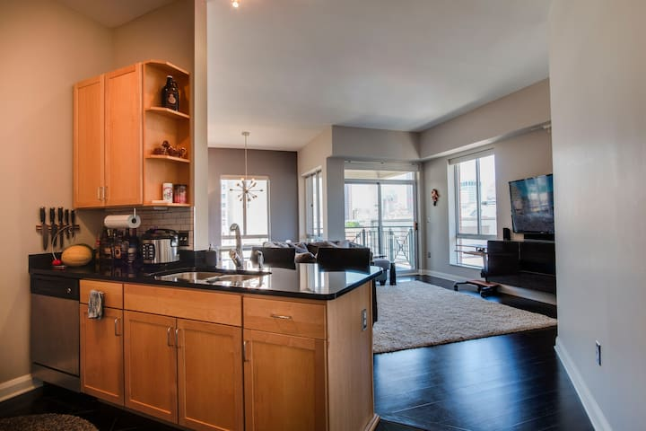 Large 2 BR Penthouse Downtown- 30 Day Min Stay