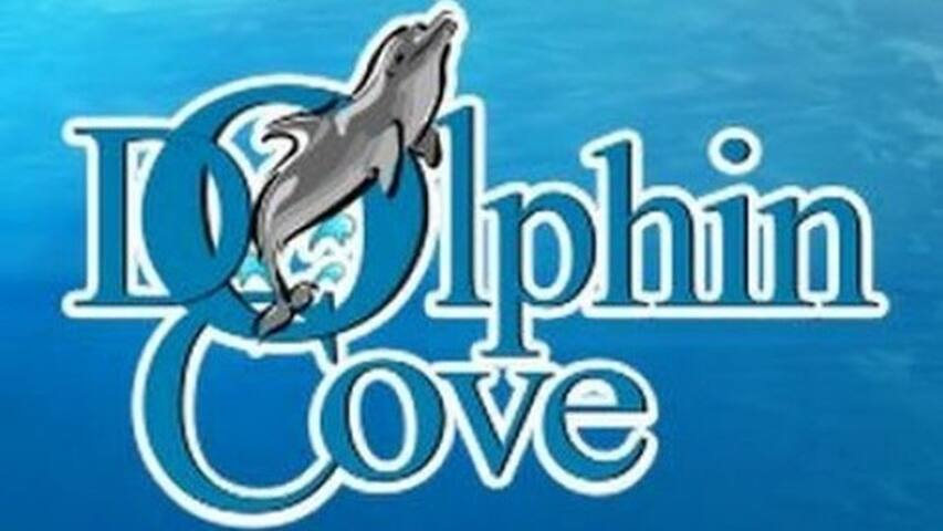 Dolphin Cove is located 5 mins away from Las Fuentes