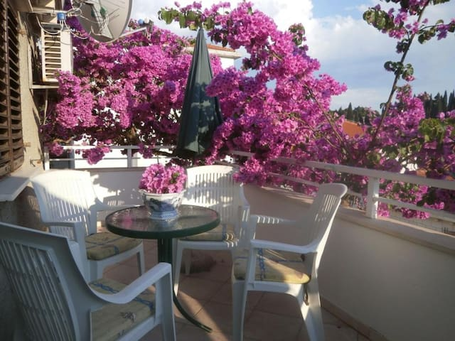 Bungevilla - Two Bedroom Apartment with Balcony - Dubrovnik - Appartement