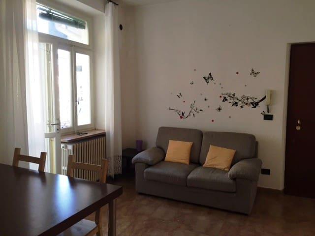 ampio bilocale arredato - Vercelli - Wohnung