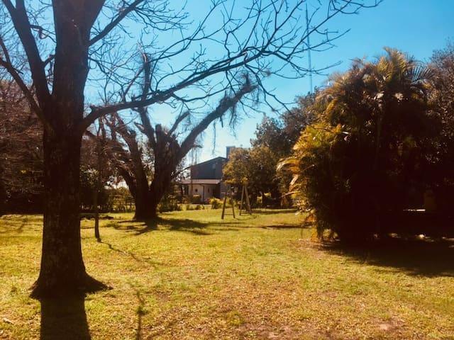 Parque arbolado